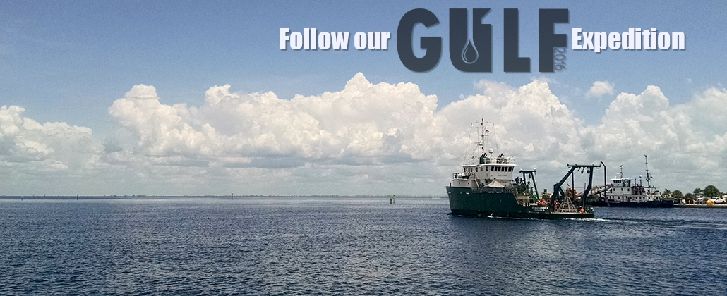 C-IMAGE Research Group Begins 40-Day Expedition Studying Gulf Of Mexico Oil Spills