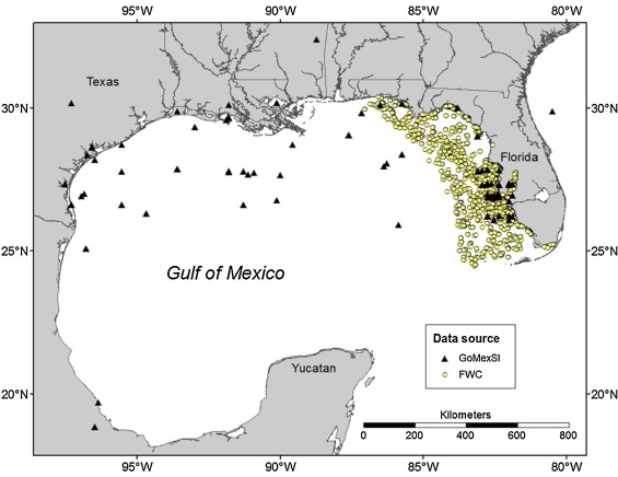 Progression Of A Gulf Of Mexico Food Web Supporting Atlantis Ecosystem Model Development