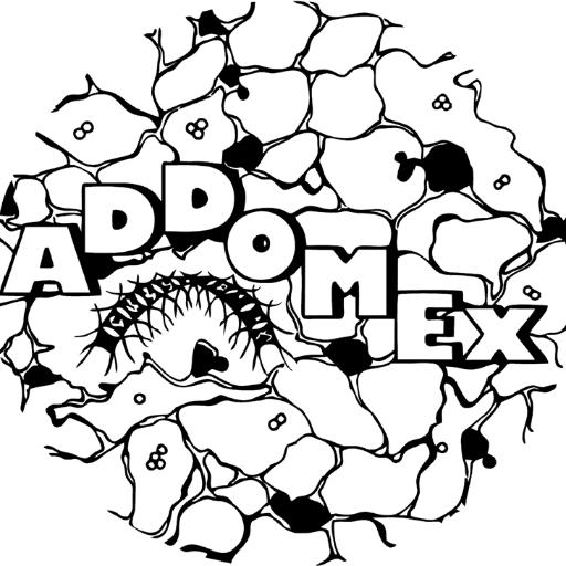 Logo ADDOMEx