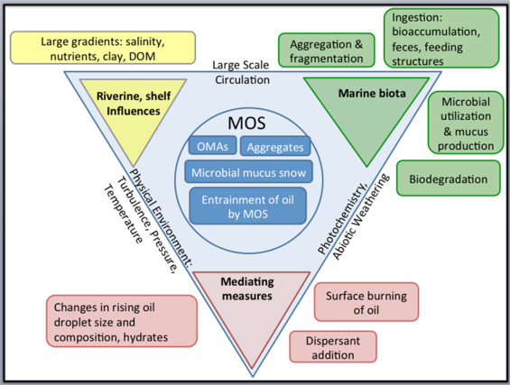 MOSSFA process
