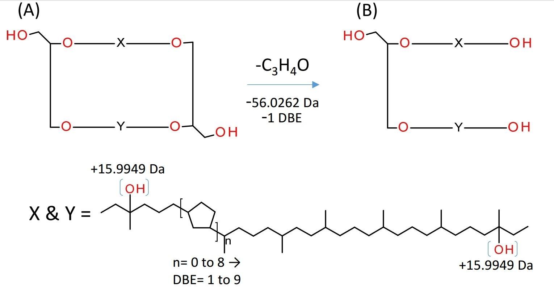Rapid Screening Of Glycerol Ether Lipid Biomarkers In Recent Marine Sediment Using APPI-P FTICR-MS