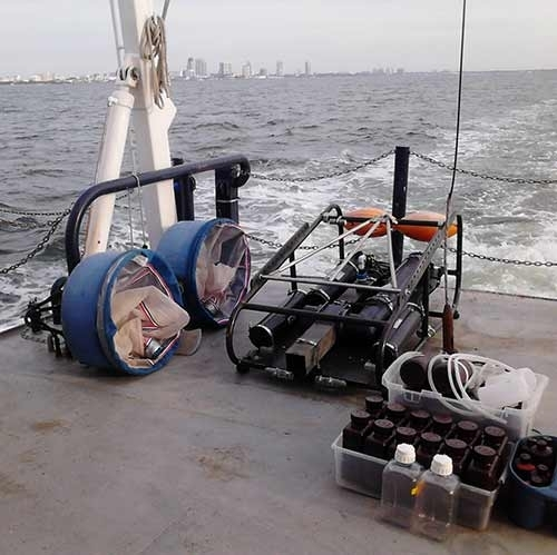 #2 Sampling For Oil In The Sediments In The Gulf Of Mexico