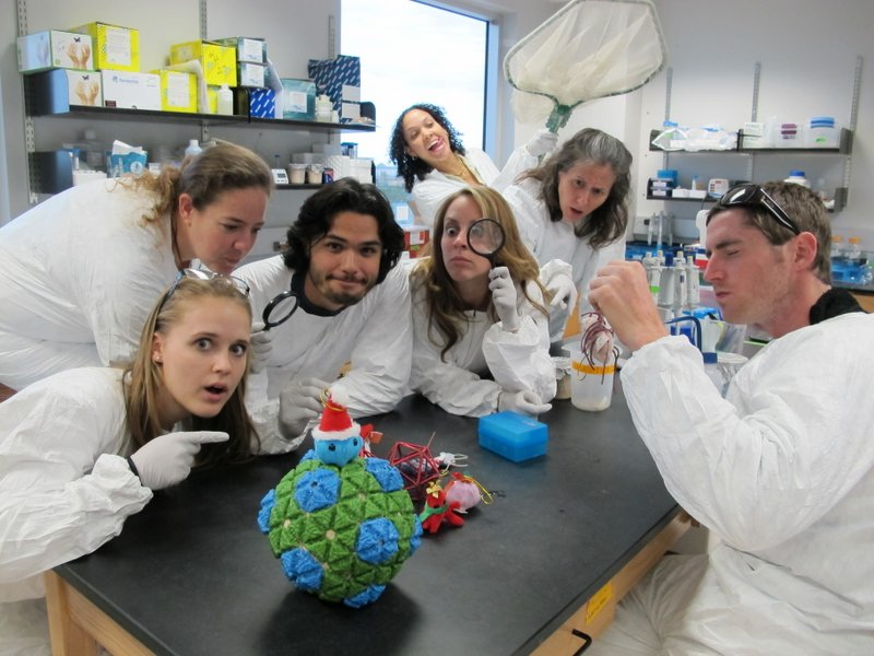virus discovery in the genomics lab