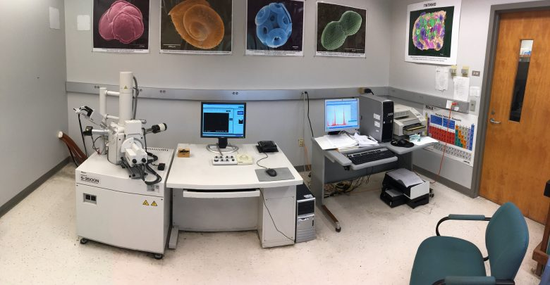 Electron Microscopy Laboratory - USF College of Marine Science