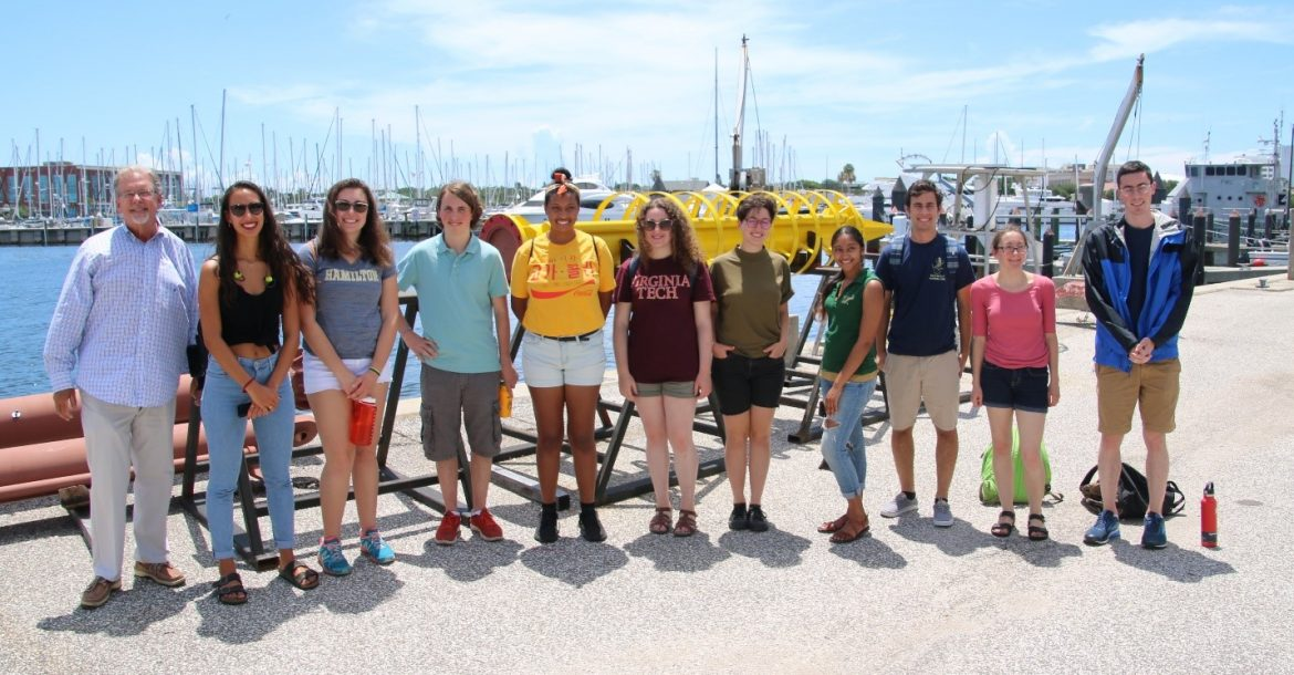 Research Experience for Undergraduates students are participating in an intensive 9-week summer course at USFCMS.