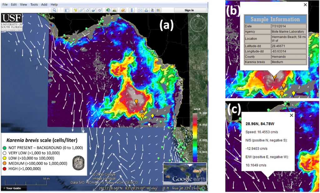 he Integrated Red Tide Information System pulls together a number of tools including satellite imagery, ocean circulation models, and water sampling data.