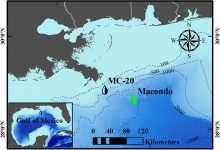 The MC-20 site (black droplet top: latitude 28.94, longitude −88.97, which also applies to the following figures) is 17km offshore of the Mississippi River Delta in the Gulf of Mexico (GoM) at a water depth of 145m. The 2010 DeepWater Horizon (DWH) oil spill in the Macondo site (green droplet top: latitude 28.74, longitude −88.37) is ~60km southeast of the MC-20 site with a water depth of ~1500m. The background color in the GoM denotes the water depth, and major bathymetry contours (in units of meters) have been noted on the map.