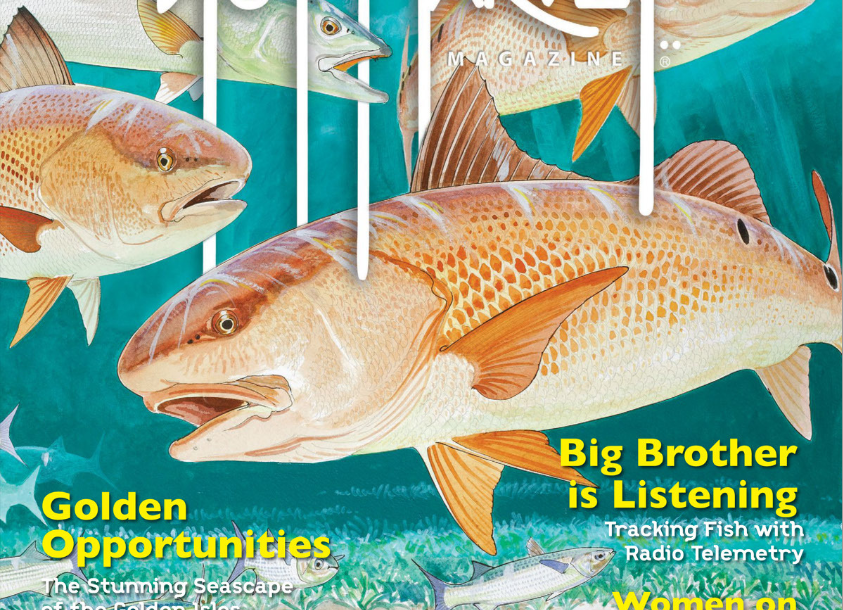 Front Cover, Guy Harvey Magazine, Fall 2018 Issue