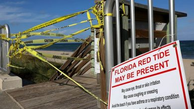 Caution tape closes off an entrance to the beach as Palm Beach County officials announced that all county beaches are closed due to red tide affecting coastal areas on October 4, 2018 in Lake Worth, Florida. Photo Credit: Getty/Joe Raedle