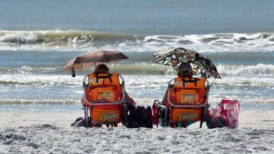 There were pockets of red tide from Turtle Beach to Lido Key in Sarasota County on Sunday, confirming that the red tide bloom that began in October 2017 is still present at area beaches. Photo Credit: Herald-Tribune staff photo / Carlos R. Munoz