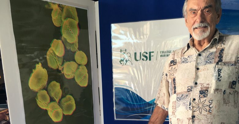 Dr. Gabe Vargo, Associate Professor Emeritus from the USF College of Marine Science, shared 3D images of Karenia brevis with the audience in Englewood, FL. The images were taken by Tony Greco, a master of microscopy who runs the Electron Microscopy Laboratory at the USFCMS. Photo Credit: Kristen M. Kusek