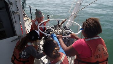 Photo of Accepting Applications for Oceanography Camp for Girls