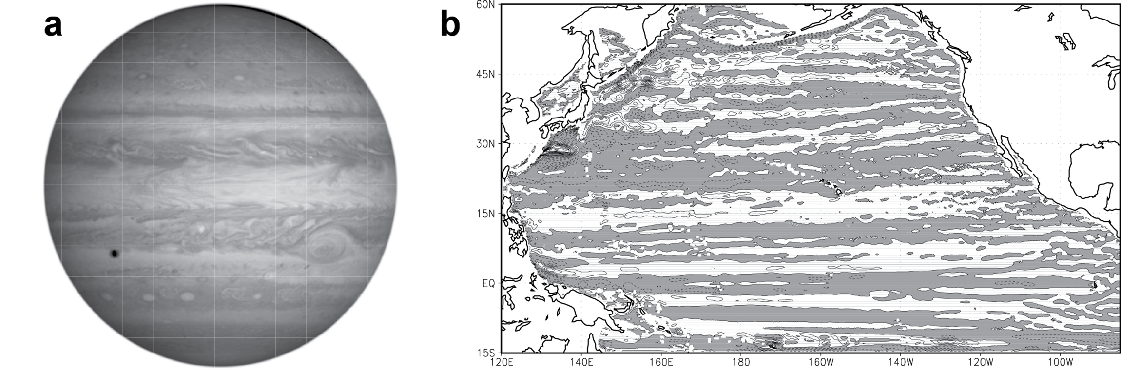 Twins: Jupiter's atmosphere and Earth's ocean? See how the composite view of the banded structure of the disk of Jupiter (a) looks similar to the zonal jets at 1000 m depth in the North Pacific Ocean (b). The North Pacific zonal jets were averaged over five years of a 58-year-long computer simulation performed by Galperin and his team, which they published in 2004 in Geophysical Research Letters [https://www.researchgate.net/publication/228797484]. The Jupiter image was taken by NASA's Cassini spacecraft on December 7, 2000 (credit: NASA/JPL/University of Arizona)