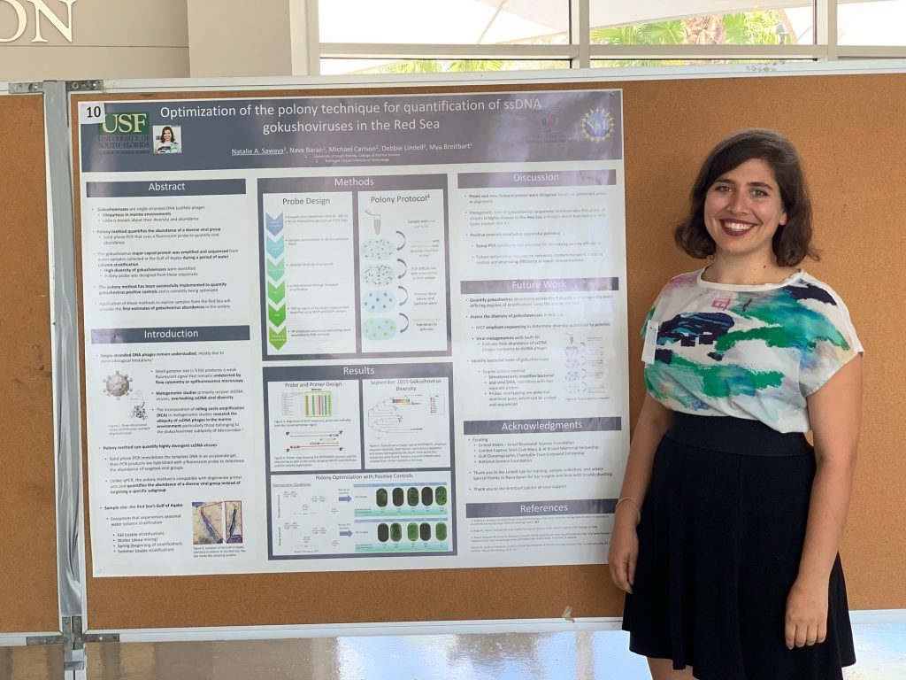 "Natalie Sawaya with her poster ""Optimization of the polony technique for quantification of ssDNA gokushoviruses in the Red Sea"", at the USF Genomics symposium."