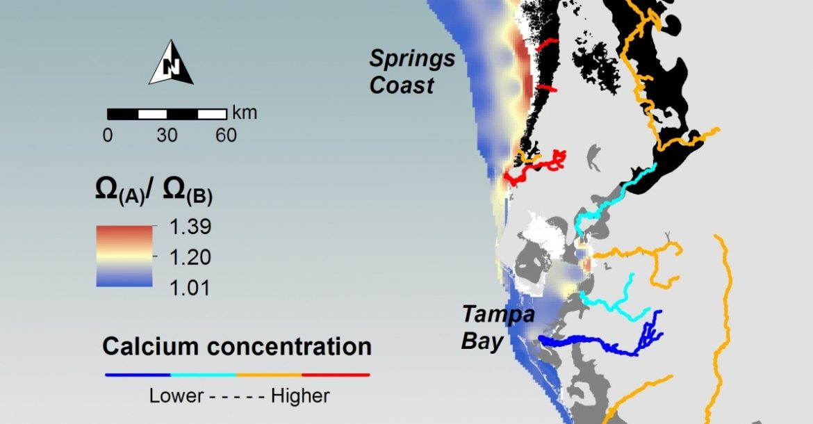 A map highlighting calcification potential in coastal waters by showing the effect of riverine calcium on calcium carbonate saturation states.