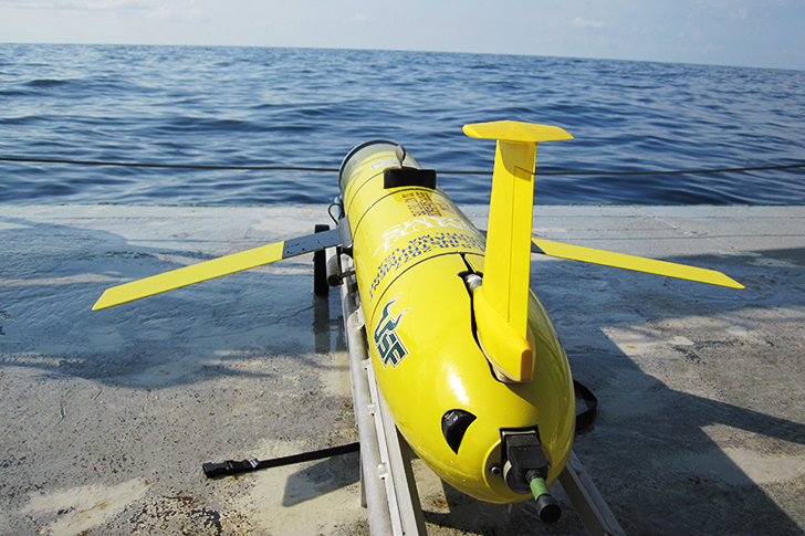 Scientists at the USF College of Marine Science deployed a glider into the epicenter region for red tides from August 24 – September 17, 2018. It measured different water properties that are proxies for red tide and helped them confirm several long-held theories about how red tides evolve.