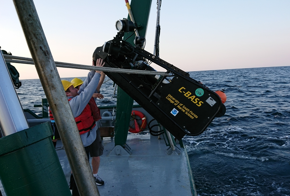 The USFCMS team deploys C-BASS, a tethered camera system that is lowered and towed near the seafloor at a speed of approximately 4.5 miles per hour.