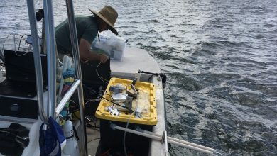Photo of 36 hours on a small boat:  Bay to river carbonate system water measurements