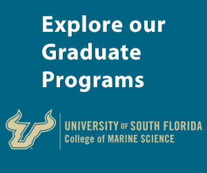 Explore our Graduate Programs