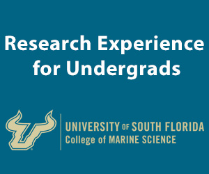 Research Experience for Undergrads