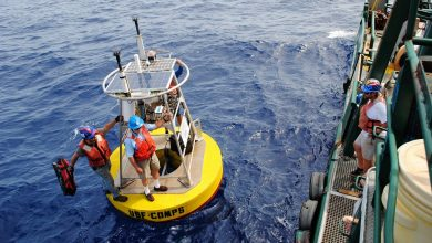 Photo of Ocean Circulation Lab cruises to the Dry Tortugas
