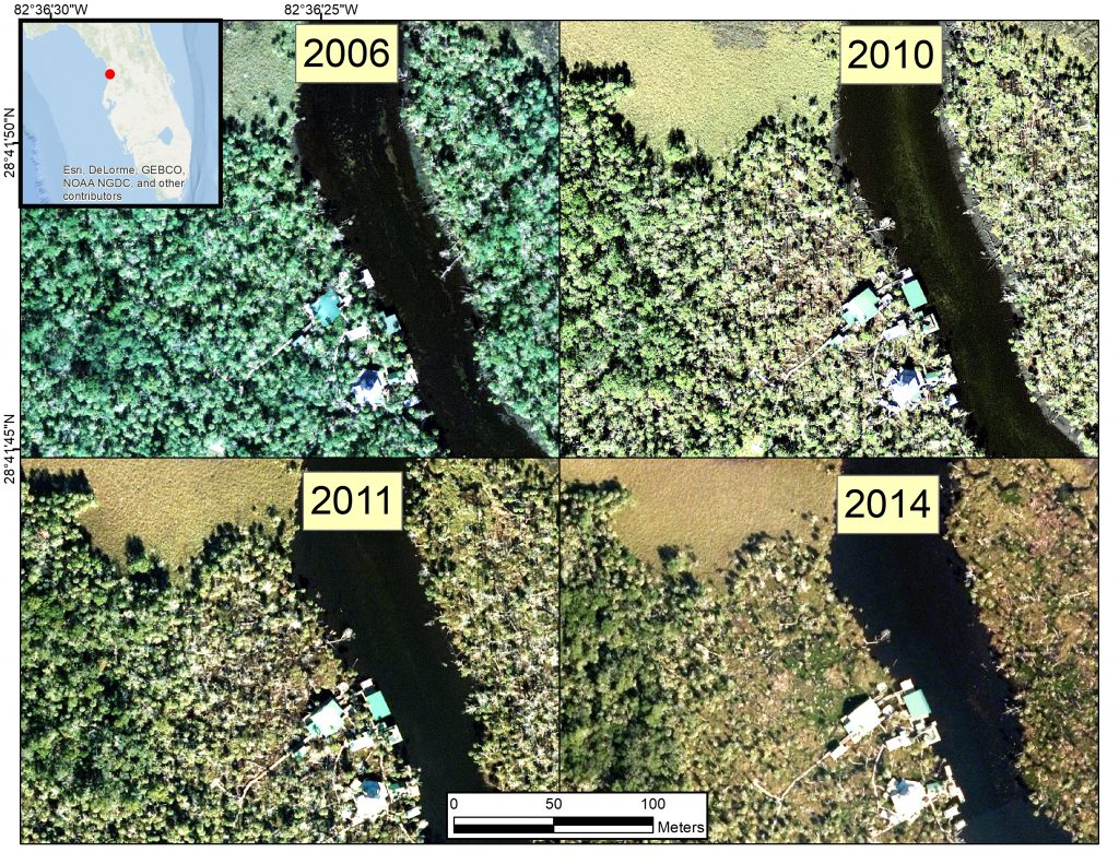 Figure 2: These aerial photographs taken between 2006 and 2014 show relatively undisturbed forest along the Chassahowitzka River and its tributaries from 2006 to 2009, followed by extended areas of reduced foliage, downed trees, and patches of bare ground starting in 2010 and 2011. (Credit: ESRI, DeLorme, GEBCO, NOAA NGDC, and others)