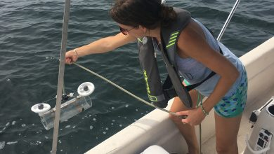 Photo of New Study Reveals Four Billion Particles of Microplastics in Tampa Bay Waters