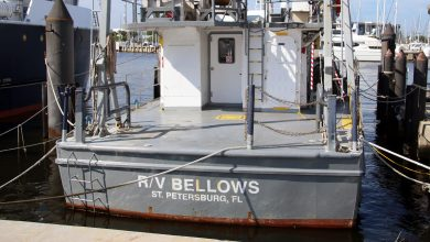 Photo of Bon Voyage, R/V Bellows!