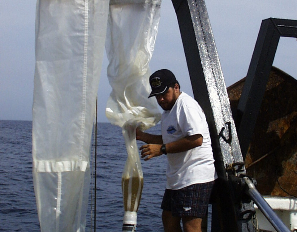 Zooplankton biomass sampling at the Cariaco station revealed ecosystem changes, especially in years when the strength of upwelling decreased and the Spanish sardine (Sardinella aurita) was overfished. (Baumar Marín, Instituto Oceanografico de Venezuela at Universidad de Oriente, Venezuela)
