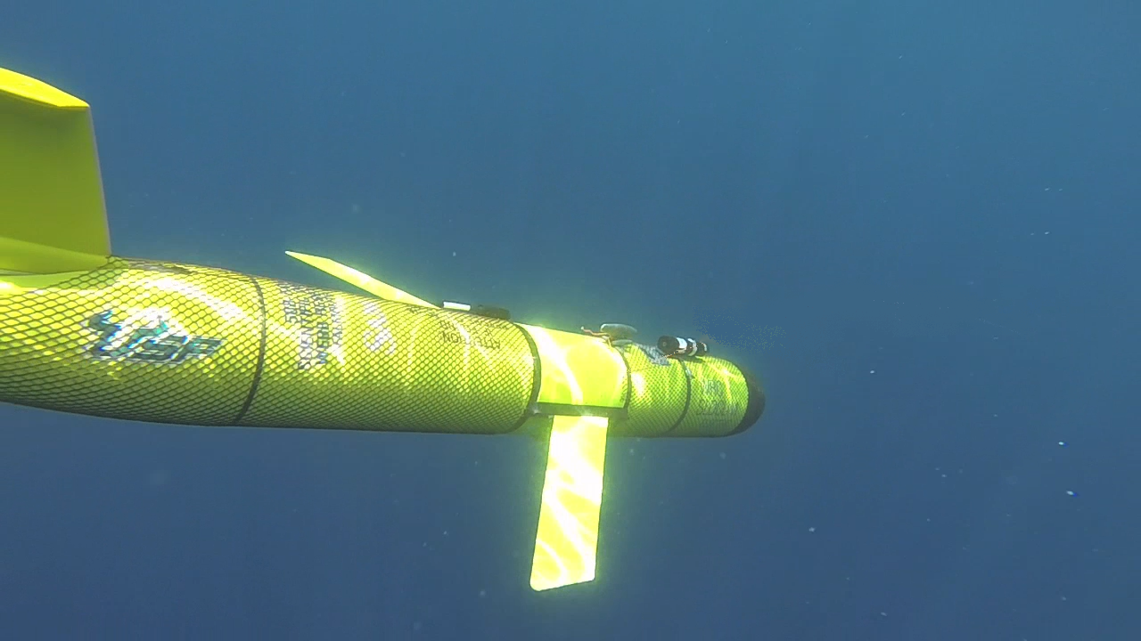 Glider beginning mission, descending through water column in the Gulf of Mexico (photo credit Edmund Hughes)