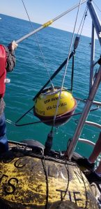 Wave Buoy Swapped by CMPS Team