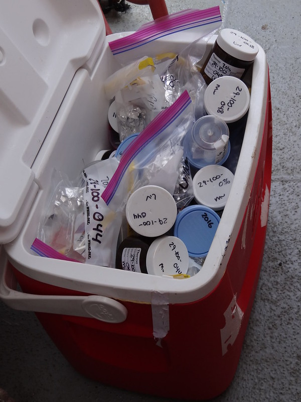 17. At the end of a good research day, the team has coolers full of samples for different analyses they perform both onboard the research vessel as well as in the lab on land.