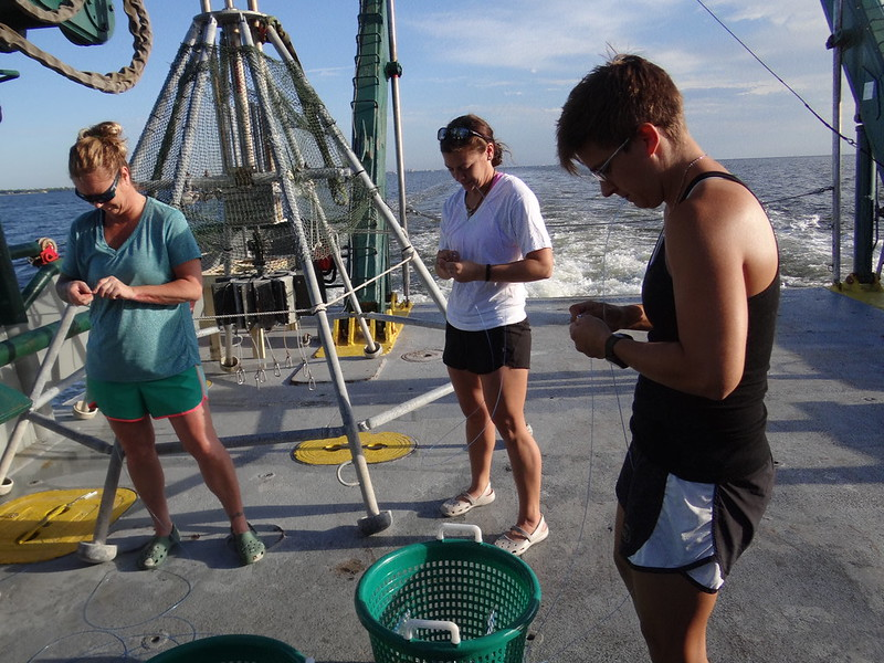 2. Then the science crew (From left to right: Dr. Erin Pulster, Kristina Deak, and Dr. Shannon O'Leary) starts tying hooks.