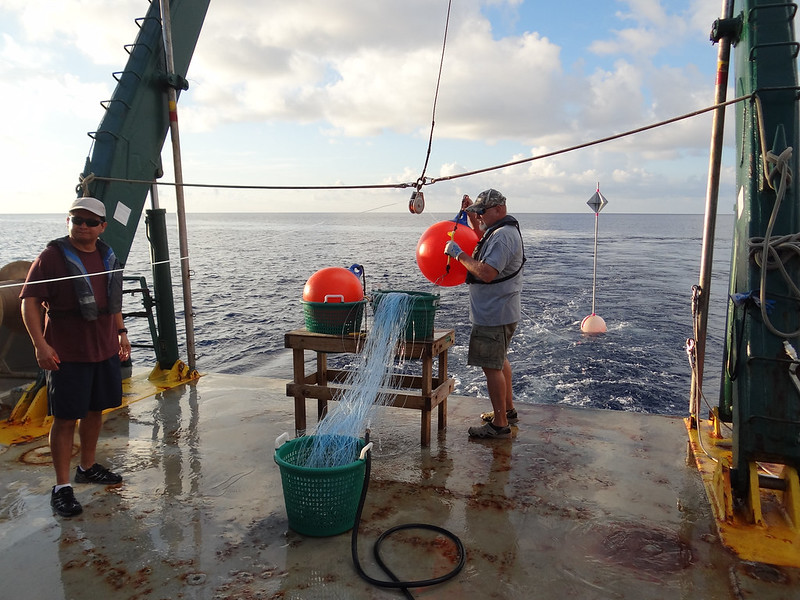 6a. Dr. Steve Murawski starts setting the line with hi-flyers and buoys.