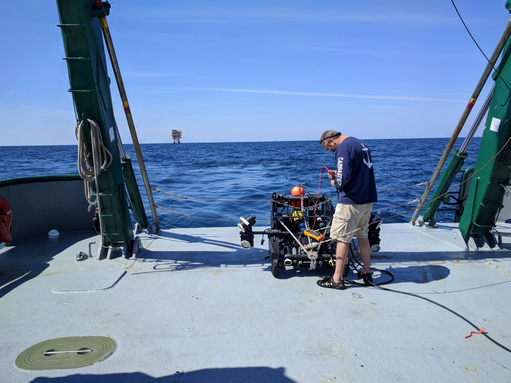 Preparation of video tow platform C-BASS for deployment in the northern Gulf of Mexico in July 2018 (In photo Chad Lembke, Vessel R/V Weatherbird, photo credit Gerardo Toro-Farmer)