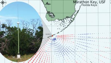 Photo of USF Leads Installation of New High Frequency Radar (HFR) near Marathon, Florida