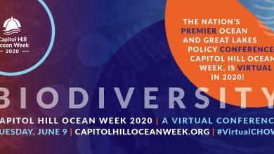 Photo of Capitol Hill Ocean Week Goes Virtual